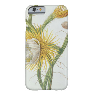 Cactus: Cereus, from Trew's 'Plantae Selectae' 175 Barely There iPhone 6 Case