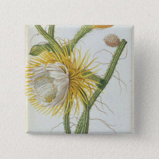 Cactus: Cereus, from Trew's 'Plantae Selectae' 175 Pinback Button