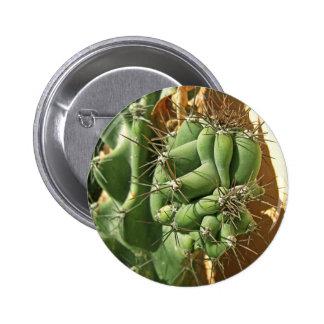Cactus Close-up 3 Pinback Button