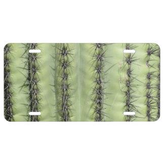 Cactus Close-up License Plate
