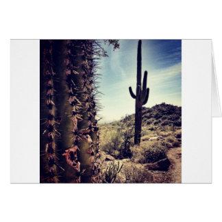 Cactus Closeup Card