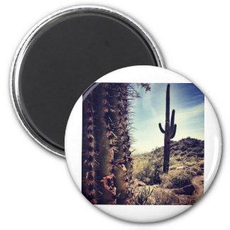 Cactus Closeup Magnet