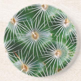 Cactus Drink Coaster
