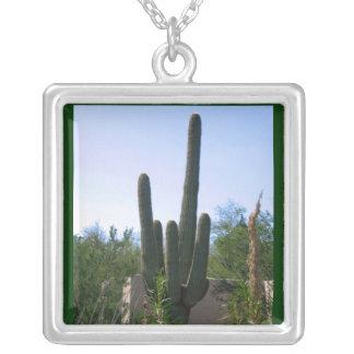 Cactus Colgante Cuadrado