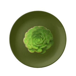 Cactus Collectors Dinner Plate