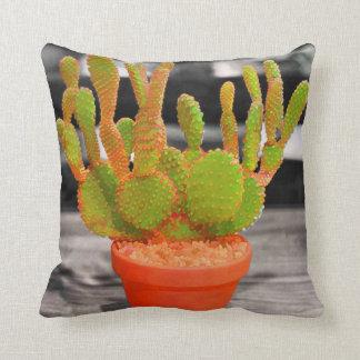 Cactus colorido almohada