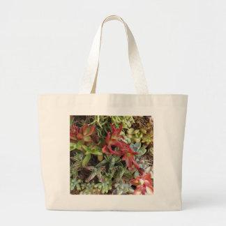 Cactus coloridos bolsa