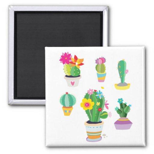 Cactus coloridos imanes de nevera