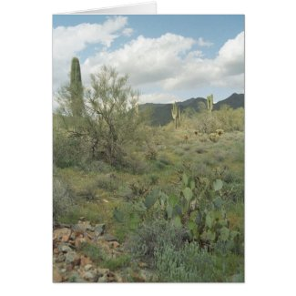 Cactus Coloring Desert Greeting Card or Note Card