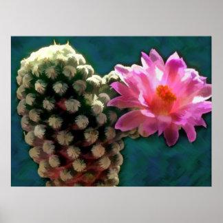 Cactus con la floración Sunlit rosada Posters