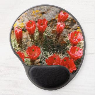 Cactus con las floraciones rojas hermosas alfombrilla de raton con gel