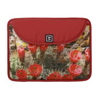 (Cactus con las floraciones rojas hermosas Funda Para Macbook Pro