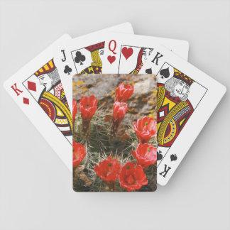 Cactus con las floraciones rojas hermosas baraja de cartas