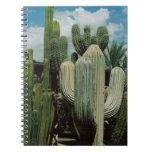 Cactus de Arizona Libros De Apuntes