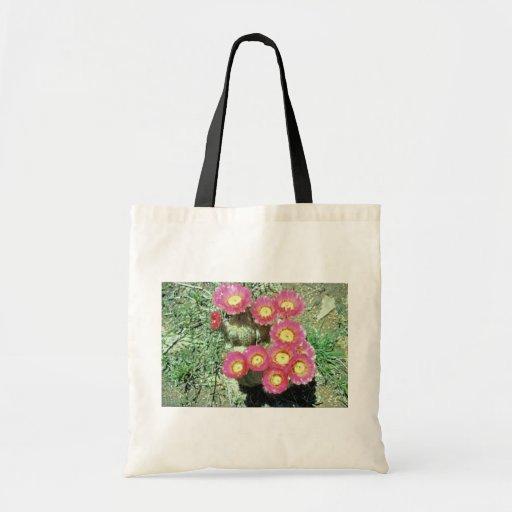 Cactus de barril bolsas
