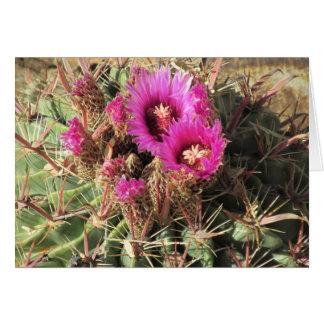 Cactus de barril de la lengua del diablo tarjeta pequeña