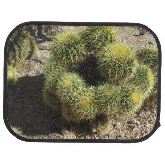 Cactus de barril de oro alfombrilla de auto