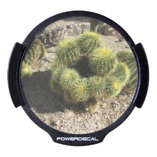 Cactus de barril de oro decal LED para ventana