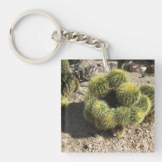 Cactus de barril de oro llavero cuadrado acrílico a doble cara