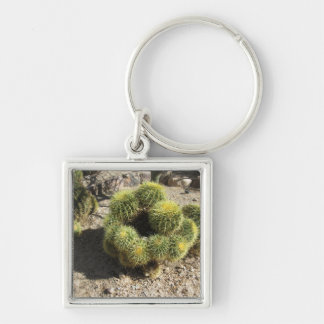 Cactus de barril de oro llavero cuadrado plateado