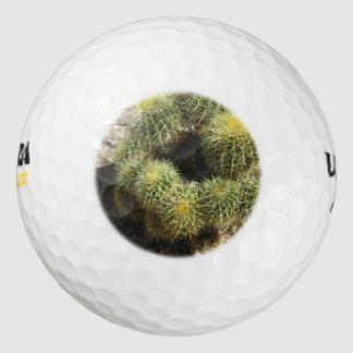 Cactus de barril de oro pack de pelotas de golf