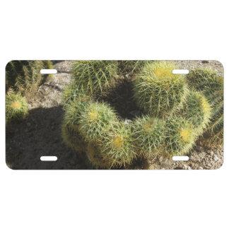 Cactus de barril de oro placa de matrícula