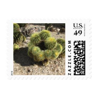 Cactus de barril de oro sellos postales
