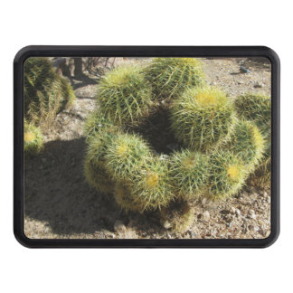 Cactus de barril de oro tapa de tráiler