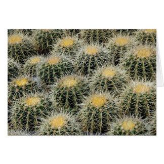 Cactus de barril de oro - tarjeta de felicitación