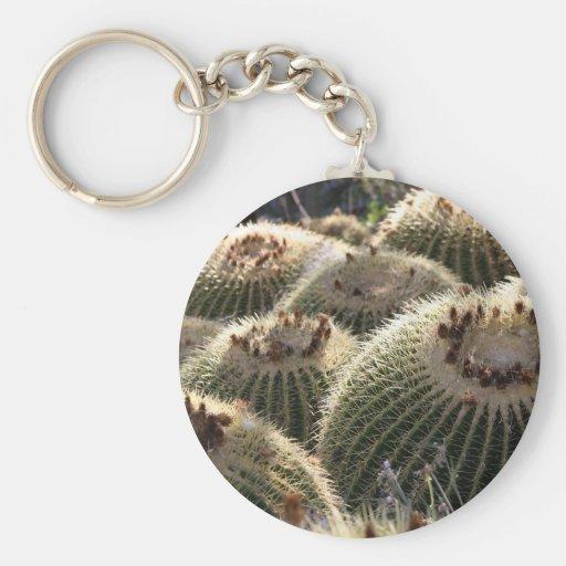 Cactus de barril en luz de la madrugada llavero