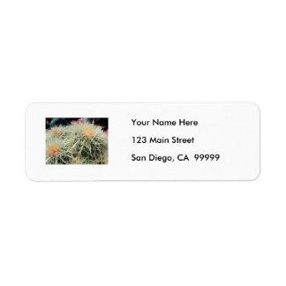 Cactus de barril espinoso etiqueta de remite