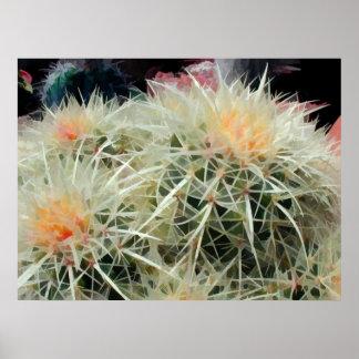 Cactus de barril espinoso poster