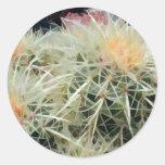 Cactus de barril espinoso pegatinas redondas