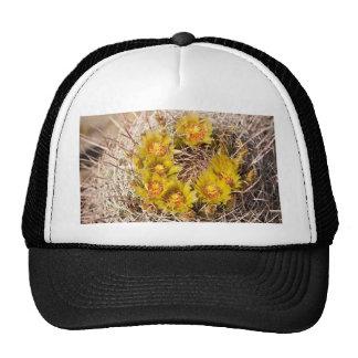 Cactus de barril gorras de camionero