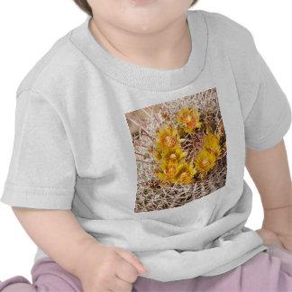 Cactus de barril camisetas