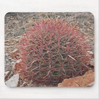Cactus de barril rojo tapete de raton