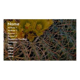 Cactus de barril tarjeta de visita