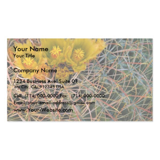 Cactus de barril plantilla de tarjeta de visita