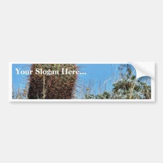 Cactus de barril un cactus en el desierto Cact de  Pegatina Para Auto