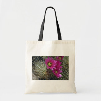 Cactus de Cholla Bolsas De Mano