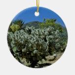 Cactus de Cholla y flores florecientes de la yuca Adorno De Reyes