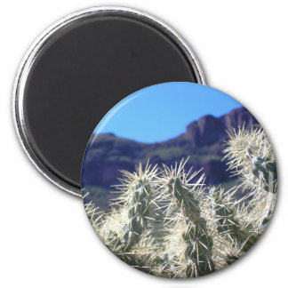 Cactus de Choya - imán #3 de Arizona