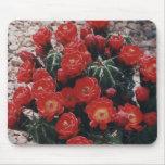 cactus de la taza de clarete tapete de raton