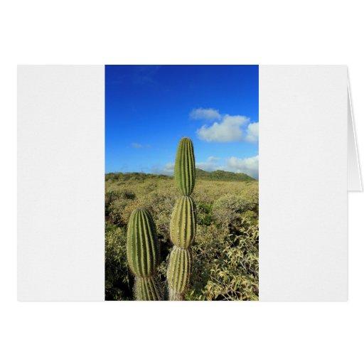 Cactus de las islas de las Islas Galápagos Tarjeta De Felicitación