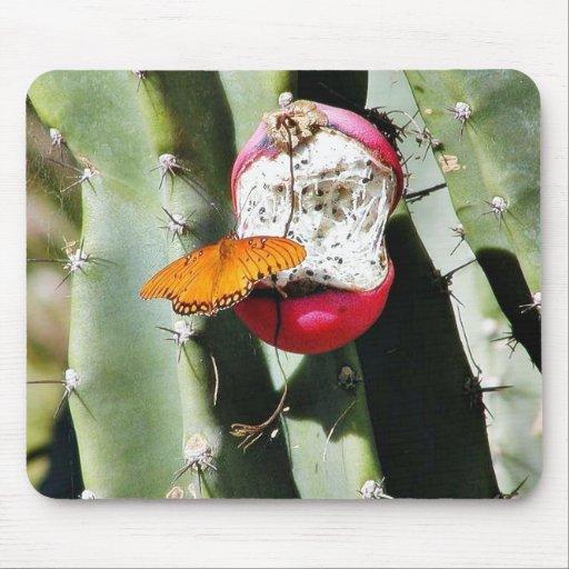 Cactus de las mariposas de la mariposa tapetes de raton