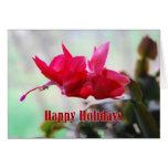 Cactus de navidad buenas fiestas tarjeta de felicitación