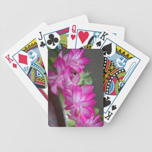 Cactus de navidad rosado barajas de cartas