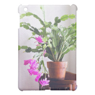 Cactus de navidad rosado grabado en relieve