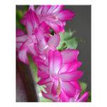 Cactus de navidad rosado membretes personalizados