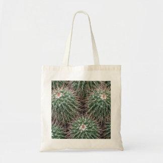 cactus de punta bolsa